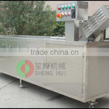 China produce vegetable cleanner central kitchen leaf vegetable washing machine automatic ozone washer