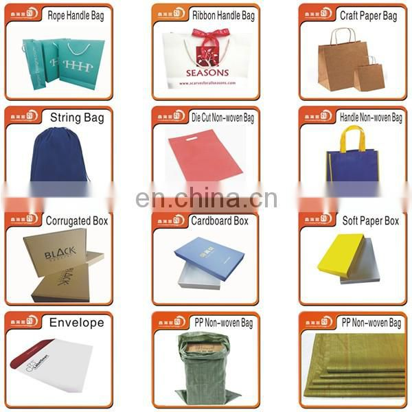 OEM clothing package shopping art paper gift bag