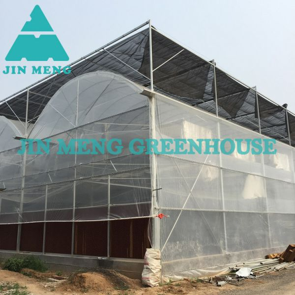 Plastic Greenhouse Kits High Efficient Plastic Film Greenhouse Large Single Span Image