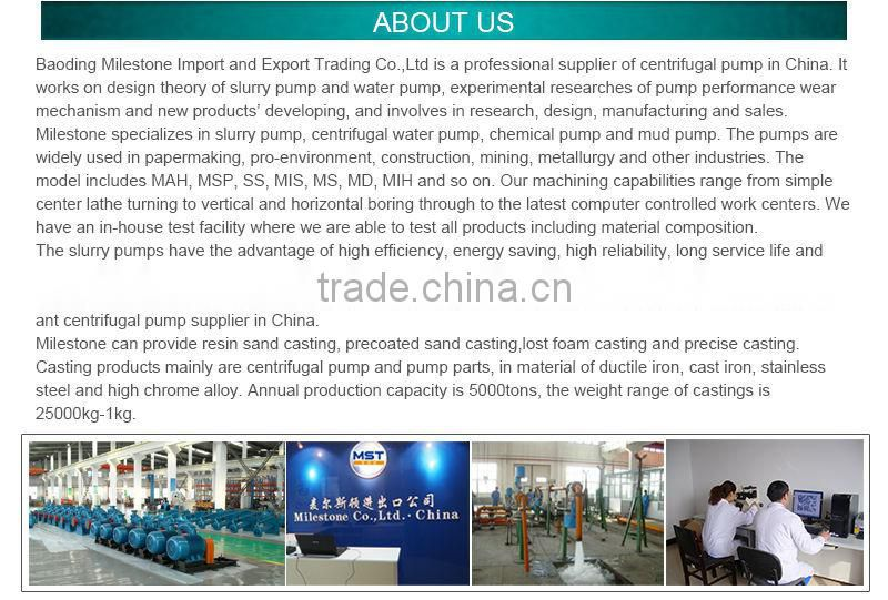 Professional Engineer High Pressure Slurry Pump
