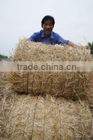 Hot Portable Baler For Rice Straw Hay