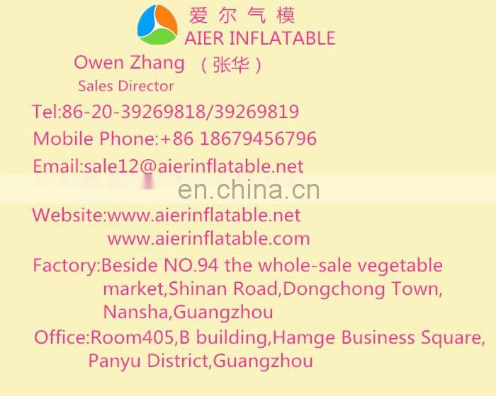 2017 Aier Online purchasing commercial inflatable slides directly from Guangzhou factory
