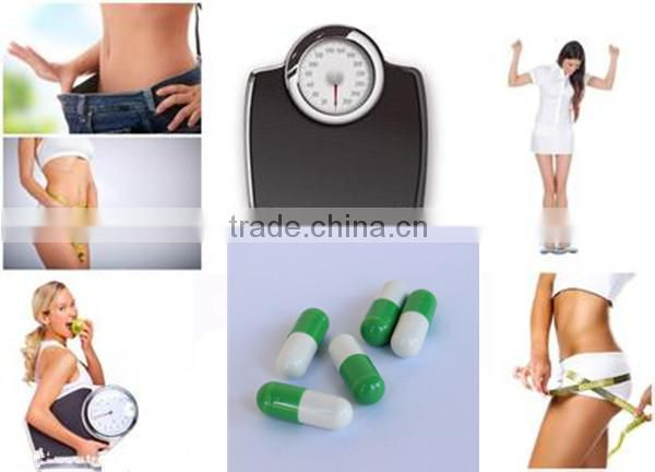 Free Sample loss weight Garcinia Cambogia Extract Capsule Product in bottle Slimming Product
