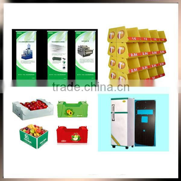 Polypropylene plastic vegetable box PP plastic material fruit packing box fruit gift packing box
