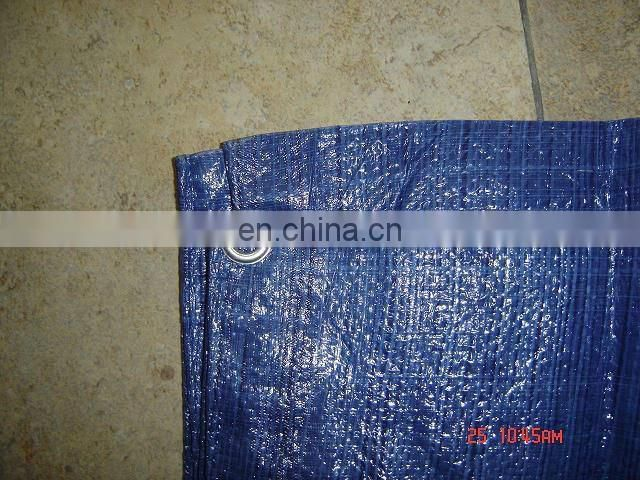 blue heavy duty truck tarp