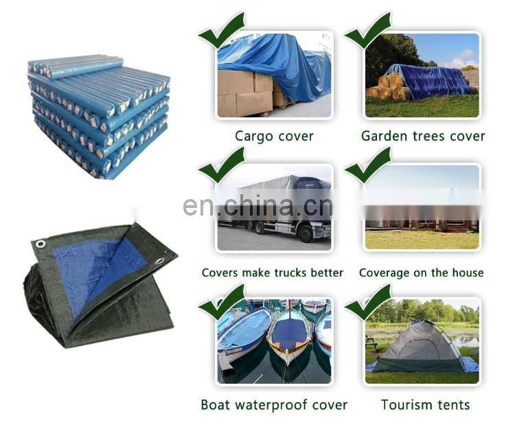 China Manufacturer Waterproof High Density Polyethylene Tarpaulin