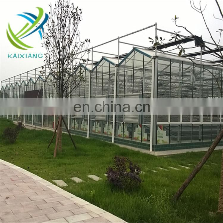 Kaixiang Venlo glass greenhouse for tomato growing