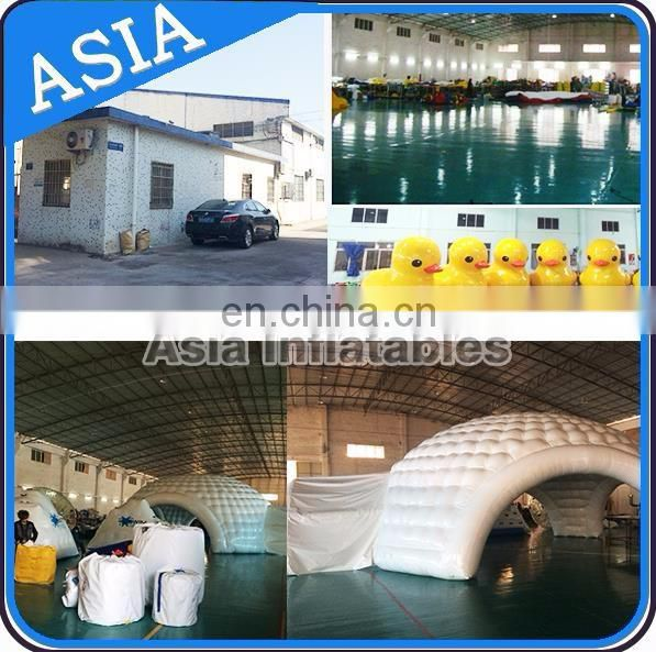 Aisa Inflatable New Coming Wedding Popular Led Inflatable Lighting Arch For Party