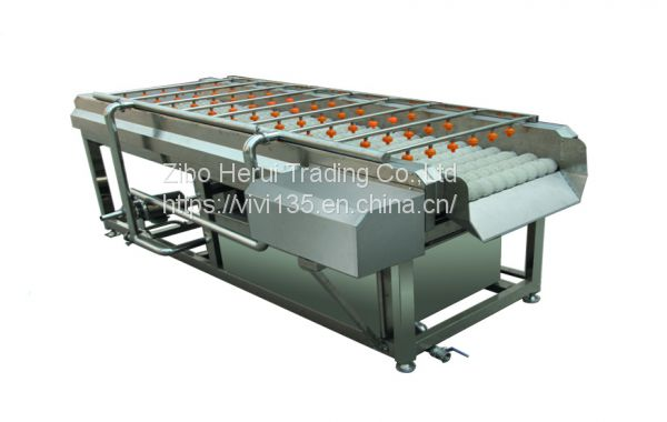 Fruit vegetable washer machine price for tomato Image