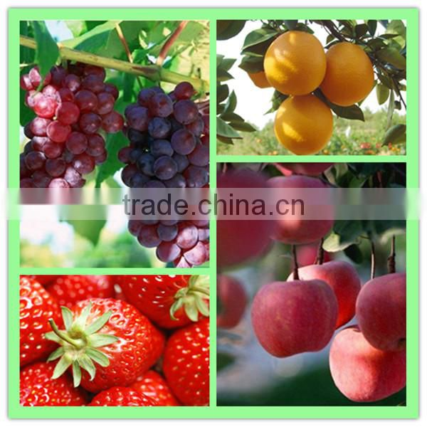 High Purity 99%TC CPPU Forchlorfenuron Fruit Enlargement Hormone
