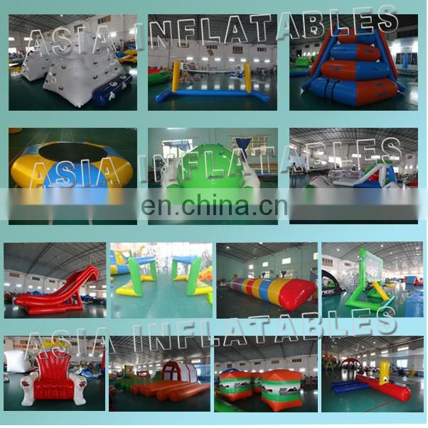 Commercial grade inflatable bumper boat for sale / electric tortoise bumper boat