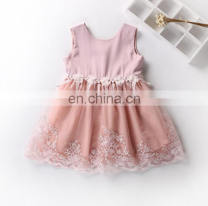 Blush Rustic Girl Tulle Dress Lace Sleeveless Toddler Dress Embroidery Birthday Outfit