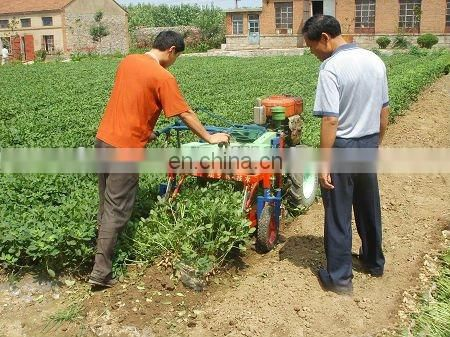 Root crop harvesting machinery supplier of China