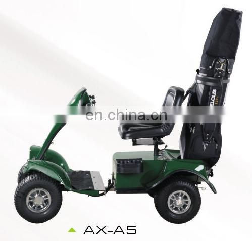 Cheap 24V1000W Golf Electric Cart, Smart Golf Car Cart with CE Certificate