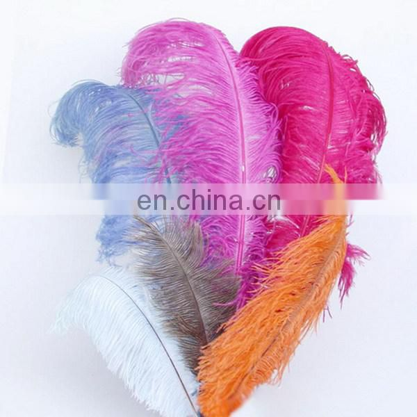 30cm Colorful Ostrich Feather For Wedding Dress 2015
