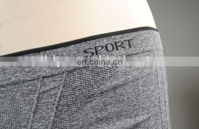 sport women seamless pants