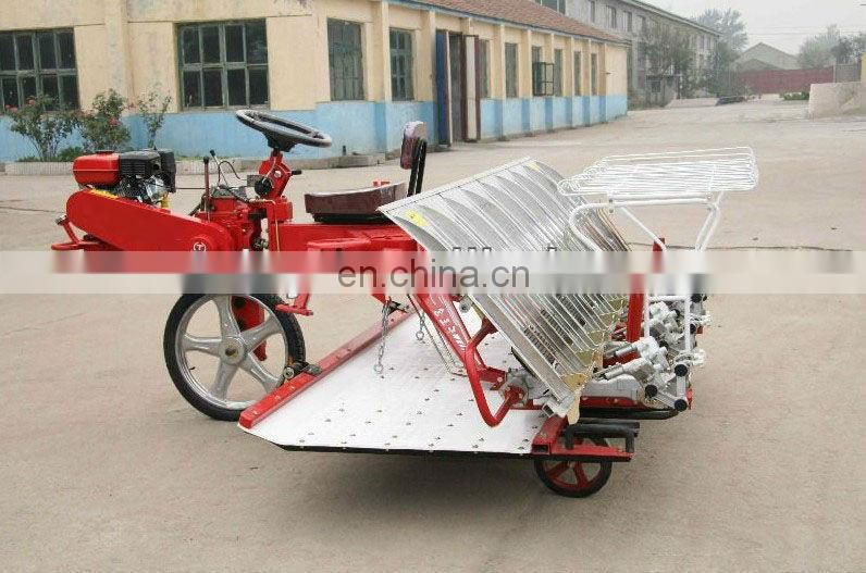 rice planting machine/paddy seeder/rice planter with factory price 0086-13838527397