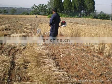 rice harvester/grass cutter exporter,popular in Philippines market