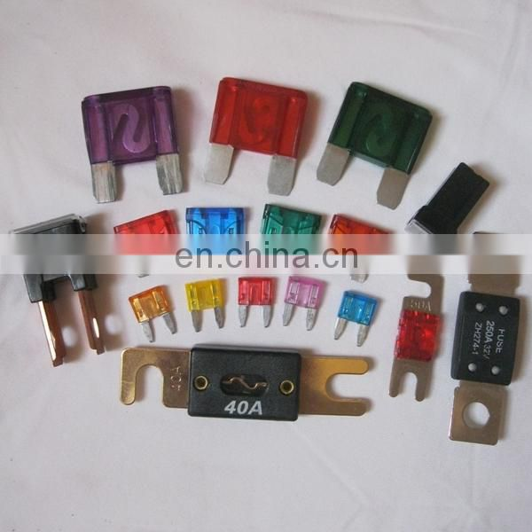 Automotive Fuse with fuse holder
