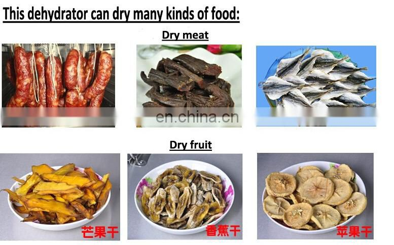 Germany is willing to dried fruit machine Fruits and dry meat food machine Snacks in the dryer