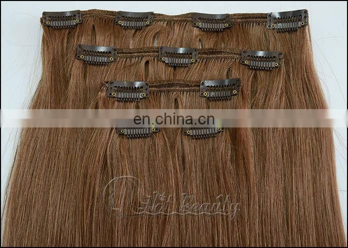 European/Indian/Brazilian Clip In Hair Extensions