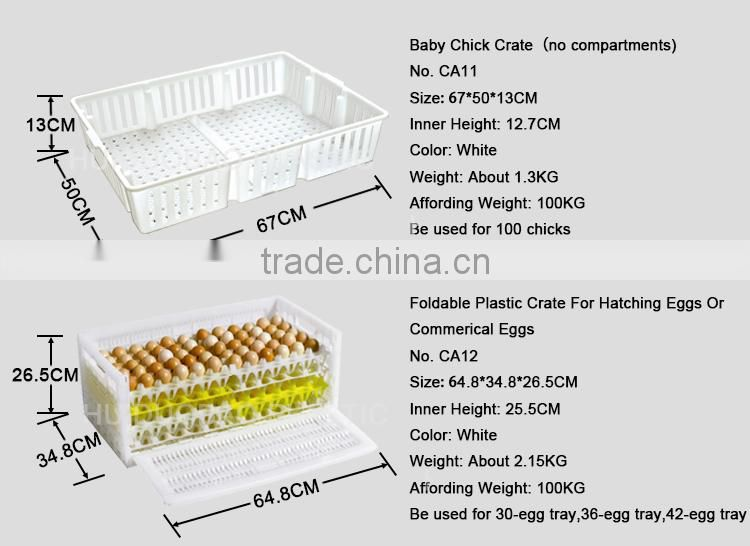 Agriculture farming quail layer cages, plastic collapsible animal turnover crate, transport crate chicken