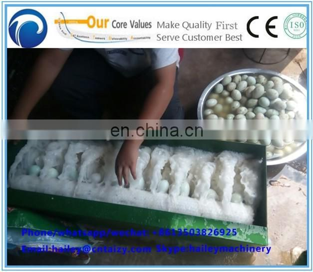 New small egg washing machinery/egg washer for washing chicken duck eggs used