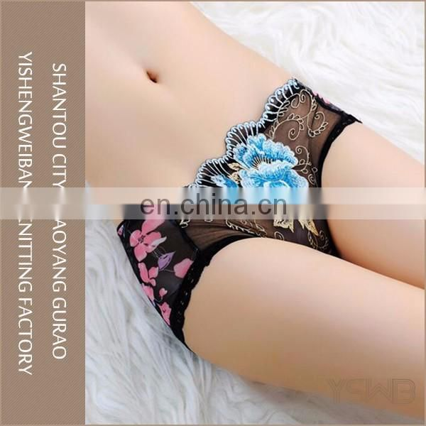 Wholesale factory price lace hipster quick dry cotton women panty sexy
