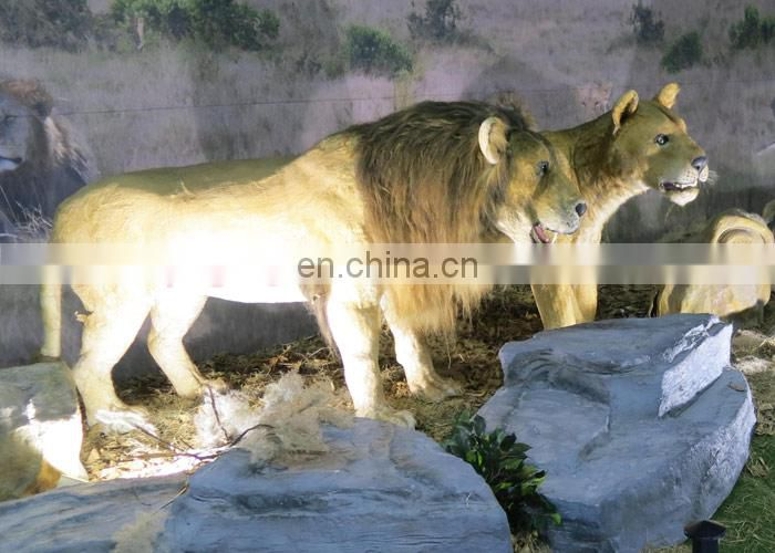 Theme park indoor animal animatronic simulation lion for sale
