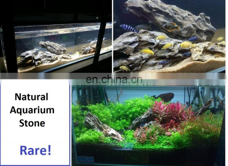 Lace Rock for Aquariums