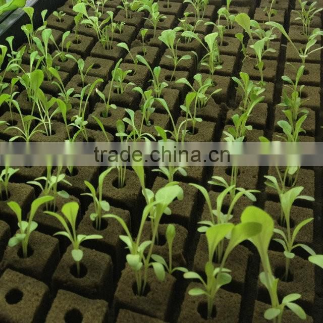 Greenhouse Used Without Fertilizer Soilless Culture Hydroponic Planting Sponge