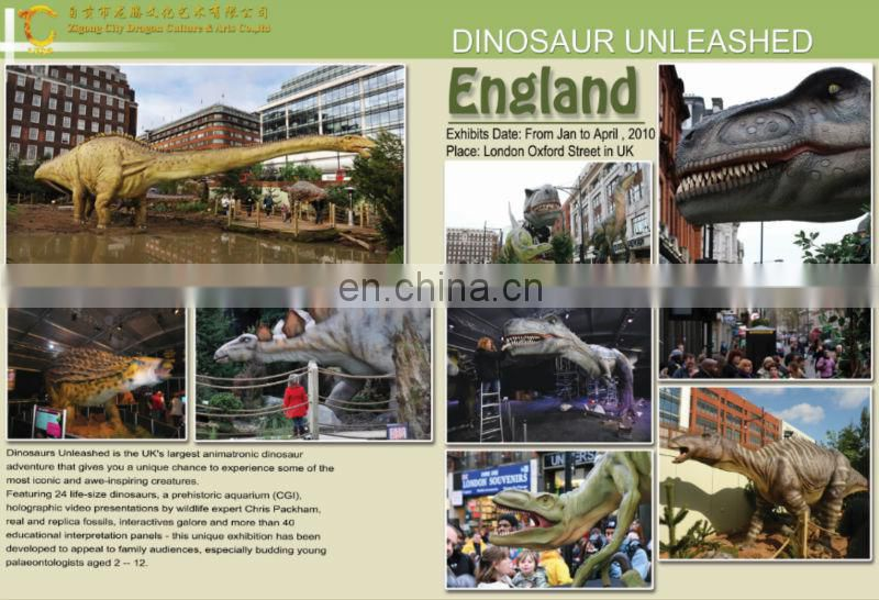 2016 realistic life size dinosaur skeleton for shopping mall