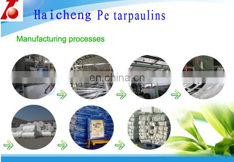 PE Material Polyethylene Drop Cloth