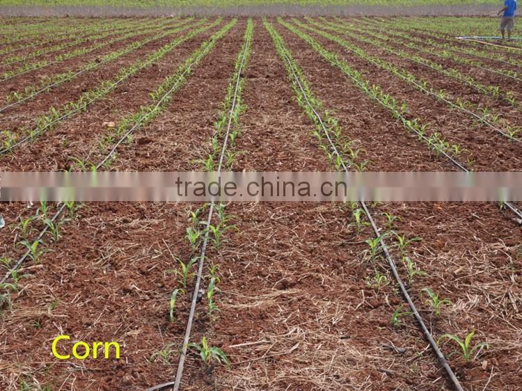 Drip irrigation Malaysia Drip irrigation price of 2  Irrigation