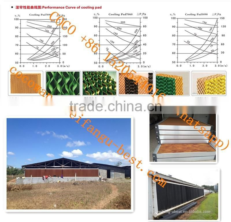 Steel Structure Design Poultry Farm Shed Industrial Chicken