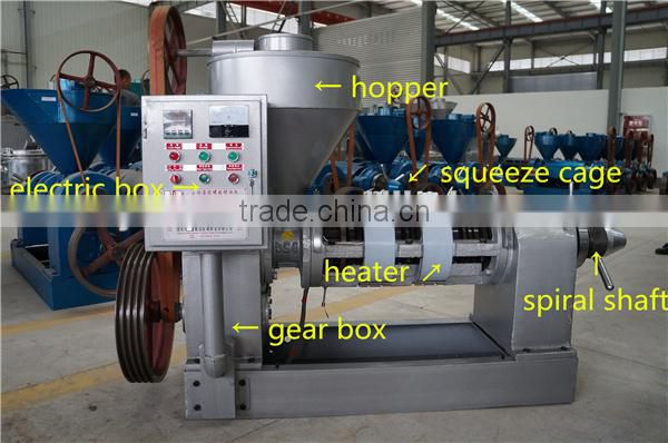 neem oil extraction machine for small business profitable projects