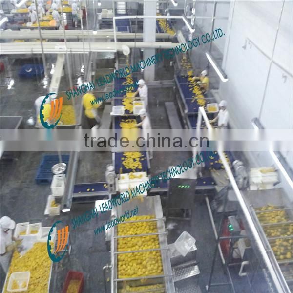 Automatic orange in syrup canning line / bottled sweet orange processing machine