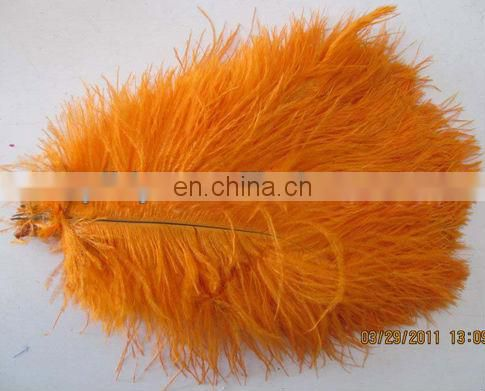 orange 35-40cm ostrich feather from south Africa
