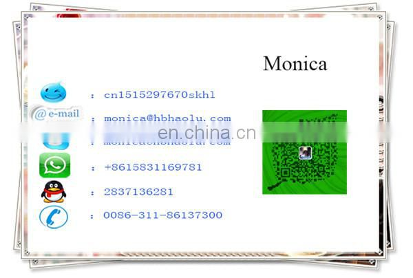High quality ECU SMW251210 for Hover 4G63