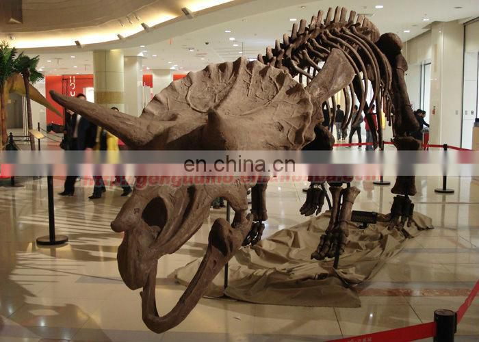 Artificial fiberglass dinosaur triceratops fossil for sale
