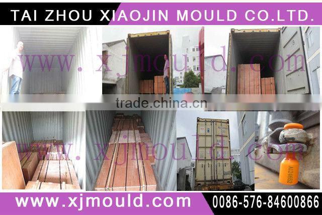 home appliance vacuum cleaner mould,electrical household appliance plastic vacuum cleaner mold