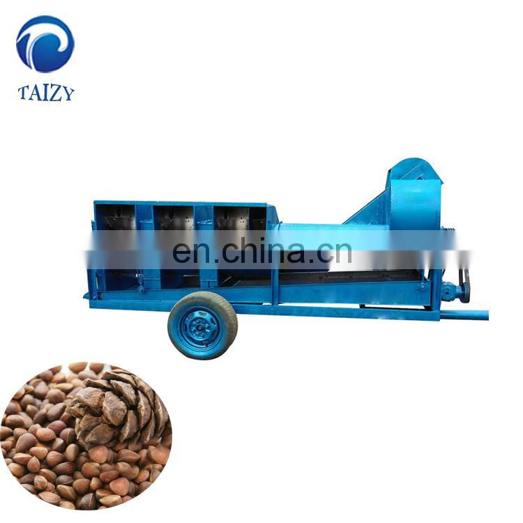 Taizy Pine nut cone shelling and kernel separating machine