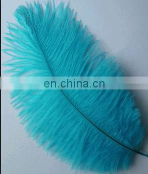 beauty 35-40cm light blue ostrich feather from south Africa