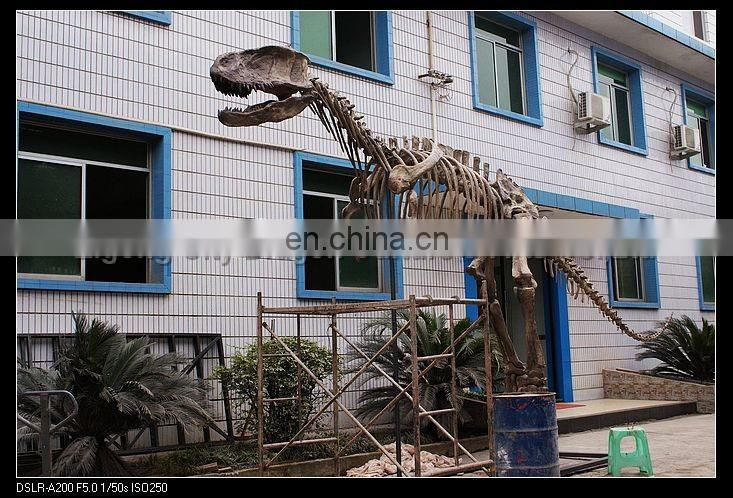 2016 jurassic park large dinosaur skeleton dinosaur fossil for sale