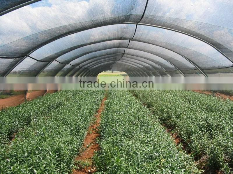 vegetables net,plastic net,sun shade netting