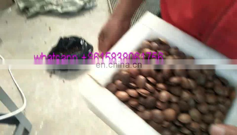 Sacha Inchi nuts shelling machine Image
