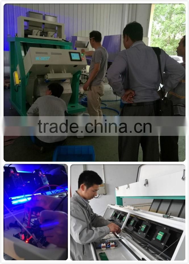 Belt CCD Camera CVC High Speed Good Performance Precision Sorting Stable Plastic Color sorter