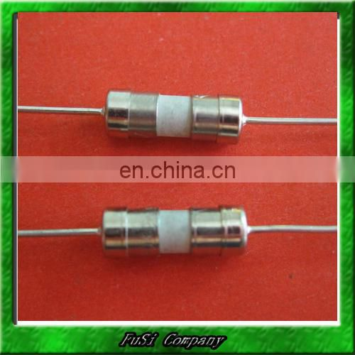 Fast Acting Type 3.6x10mm Axial Lead Ceramic Fuse 250V