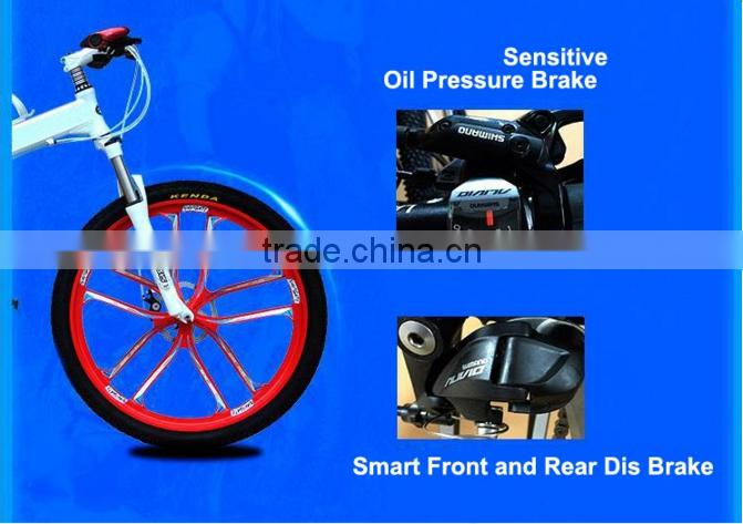 (160431) Hot sale cheap bicycle for sale two wheels for kids or adults folding bike
