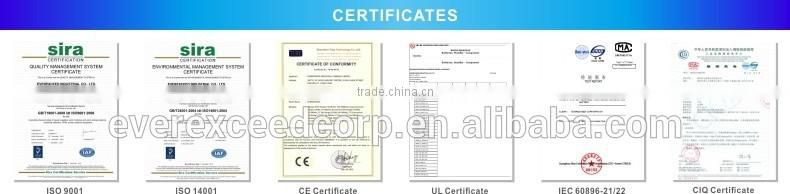 EVEREXCEED Standard Sealed lead acid 12v ups battery of